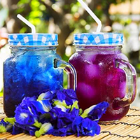 butterfly-pea-flower-changes-colors
