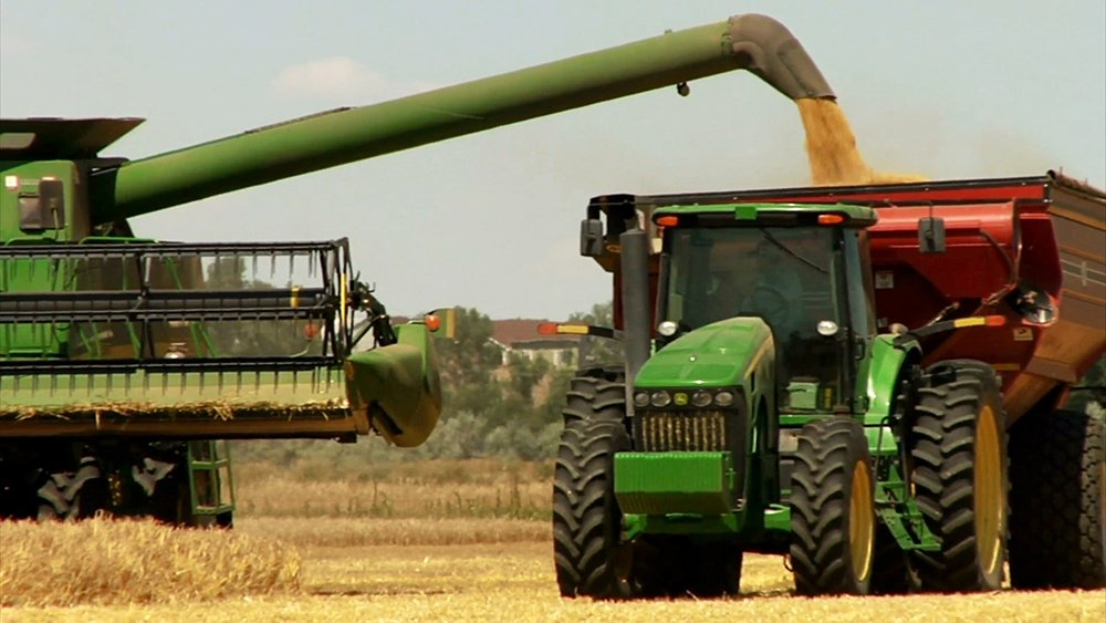 combine-offloads-wheat-to-tractor