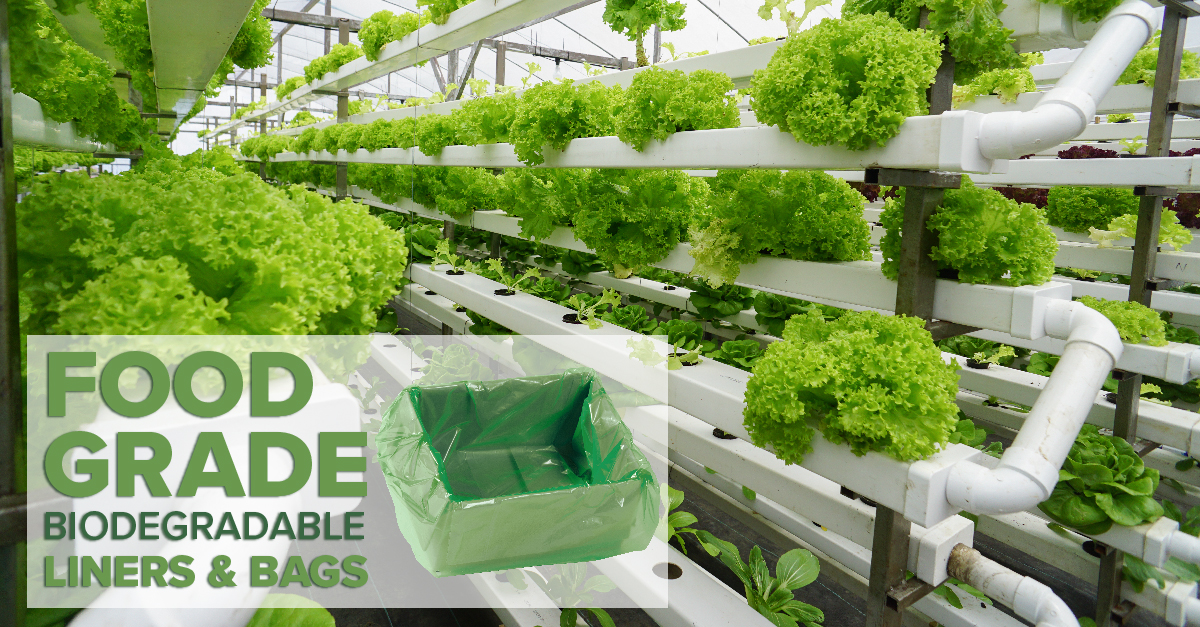 hydroponic greens shown with biodegradable box liner