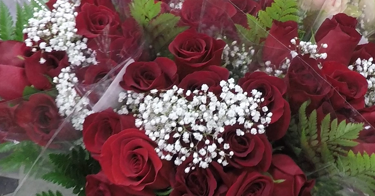 Close up view of red roses and baby's breath
